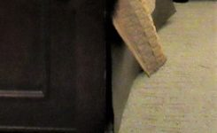 bedskirt_closeup